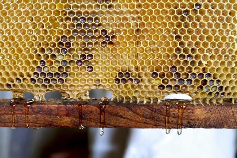 miel de brezo propiedades