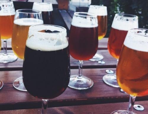 Las 5 Mejores Cervezas Artesanas del Bierzo